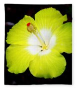 Tropical Hibiscus - Bonaire Wind 04a Fleece Blanket