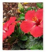 Tropical Hibiscus - Starry Wind 01 Fleece Blanket