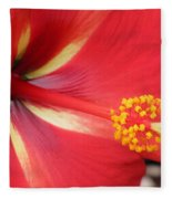 Tropical Hibiscus - Starry Wind 04 Fleece Blanket