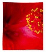 Tropical Hibiscus - Trinidad Wind 02a Fleece Blanket
