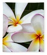 Tropical Maui Plumeria Fleece Blanket