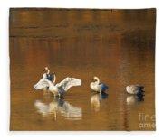 Trumpeter Ballet Fleece Blanket