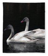 Trumpeter Swan Cygnets Fleece Blanket
