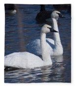 Trumpeter Swan Pair Fleece Blanket