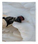Trumpeter Swan Peek-a-boo Fleece Blanket