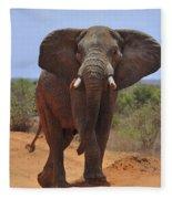Tsavo Elephant Fleece Blanket