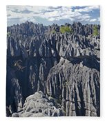 Tsingy De Bamaraha Madagascar Fleece Blanket