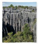 Tsingy De Bemaraha Madagascar 1 Fleece Blanket