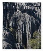 Tsingy De Bemaraha Fleece Blanket