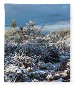 Tucson Covered In Snow Fleece Blanket