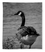 Tufted Tail Feathers Fleece Blanket