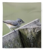 Tufted Titmouse With Seed Fleece Blanket