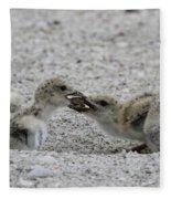 Tug-o-war Fleece Blanket
