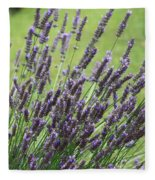 Tuilieres Lavender Fleece Blanket