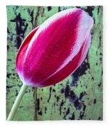 Tulip Against Green Wall Fleece Blanket