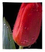 Tulip Close Up Fleece Blanket