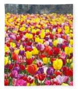 Tulip Flower Festival Art Prints Spring Fleece Blanket