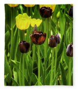 Tulip Race Time Fleece Blanket
