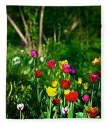 Tulip Rainbow Fleece Blanket