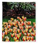 Tulip Stripe Garden Fleece Blanket