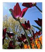 Tulip Tango Fleece Blanket
