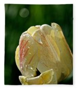 Tulip Teardrops  Fleece Blanket