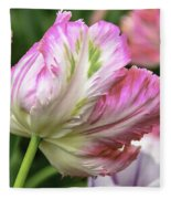 Tulip Time Pink And White Fleece Blanket