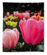 Tulip Trail Fleece Blanket