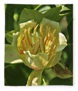Tulip Tree Fleece Blanket