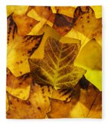 Tulip Tree Leaves In Autumn Fleece Blanket