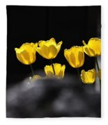 Tulips 6077 Fleece Blanket