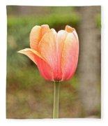 Tulips At Thanksgiving Point - 18 Fleece Blanket