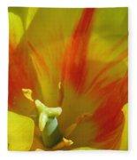 Tulips - Cheerful Energy 06 Fleece Blanket