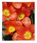 Tulips - Field With Love 25 Fleece Blanket