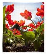 Tulips In Spring Fleece Blanket