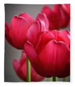 Tulips In The  Morning Light Fleece Blanket