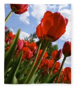 Tulips Leaning Tall Fleece Blanket
