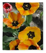 Tulips Tp Fleece Blanket