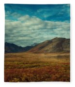 Transition Fleece Blanket
