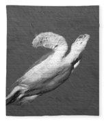 Turtle Gaffiti Fleece Blanket