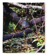 Turtle In The Glades Fleece Blanket
