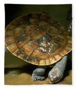 Turtles Float Fleece Blanket