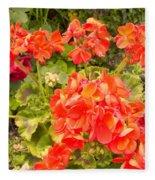 Tuscany Flower Garden Fleece Blanket