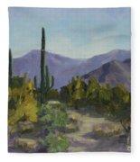 The Serene Desert Fleece Blanket