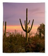 Twilight After Sunset In The Cactus Forests Of Saguaro National Park Fleece Blanket