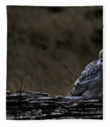 Twilight Owl Fleece Blanket