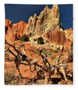 Twisted And Colorful Fleece Blanket