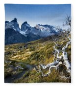 Twisted Tree And Trail Fleece Blanket