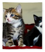 Two Adorable Kittens Fleece Blanket