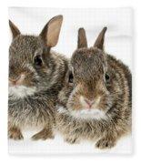 Two Baby Bunny Rabbits Fleece Blanket